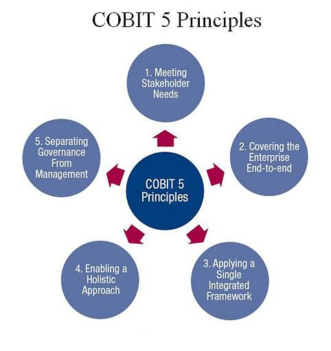 COBIT 5 principles