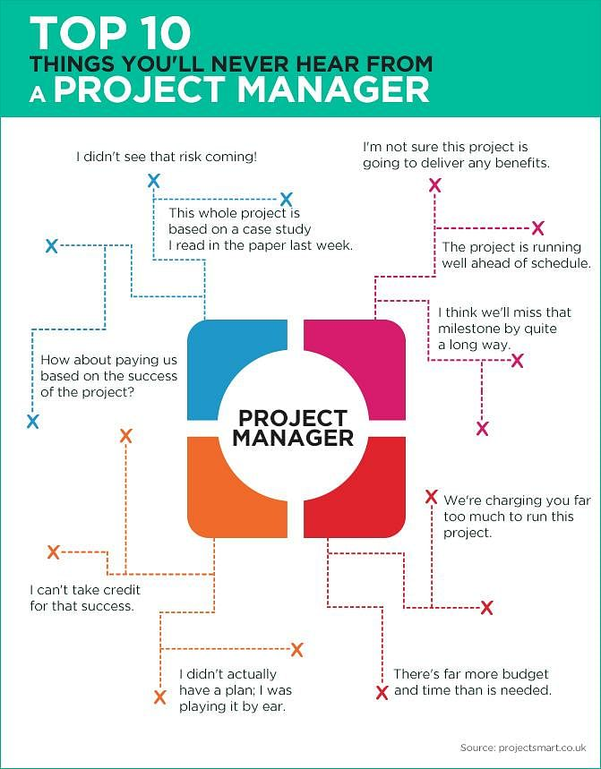 Project Manager Role