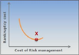 Reducing Bankruptcy Costs: Financial Risk Management