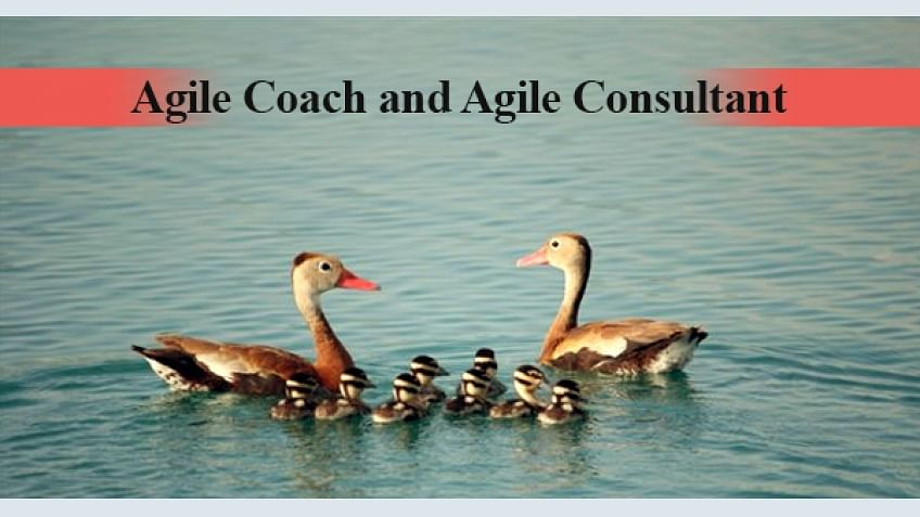What is the difference between Agile Coach and Agile Consultant?
