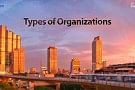 Types of Organizations: PMP Exam Preparation