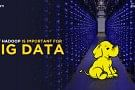 Why is Big Data the Next Big Thing? – Evaluating the Hadoop Latitude