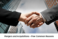 An Introduction to Global Mergers and Acquisitions