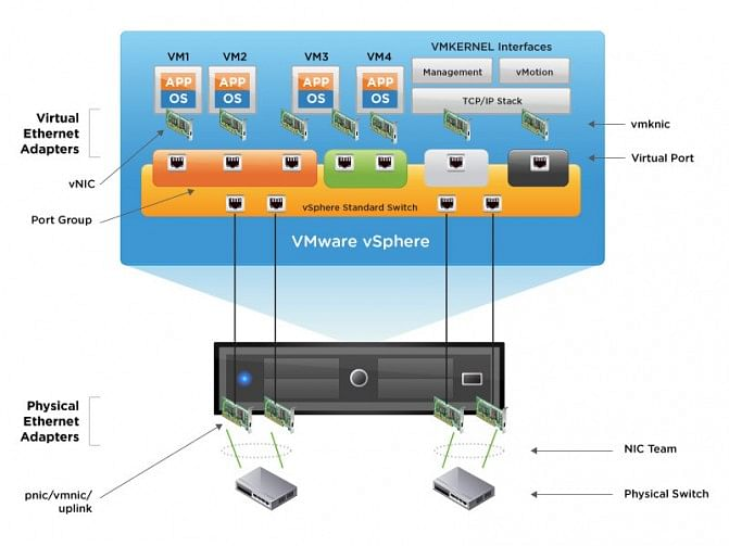 Virtual Network Interface – VMware vSphere