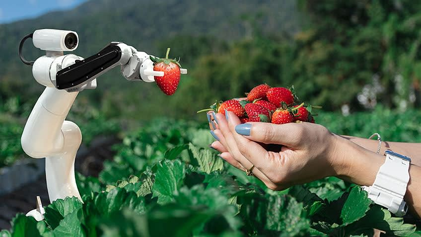 Leveraging AI in the Agriculture Industry