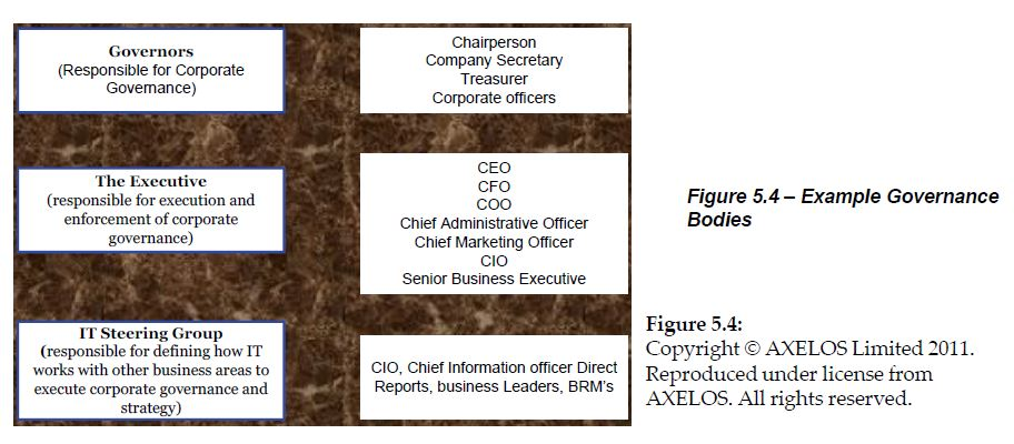 example governance bodies