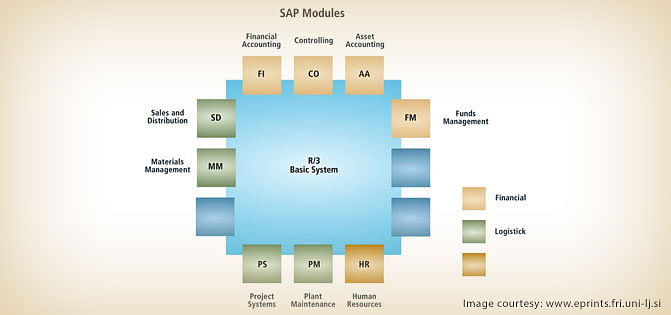 SAP Financials and SAP Accounting Modules