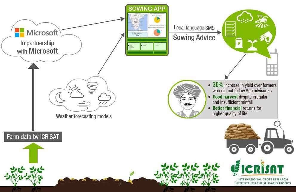 how-sowing-app-helps-farmers-in-crop-productivity.jpg