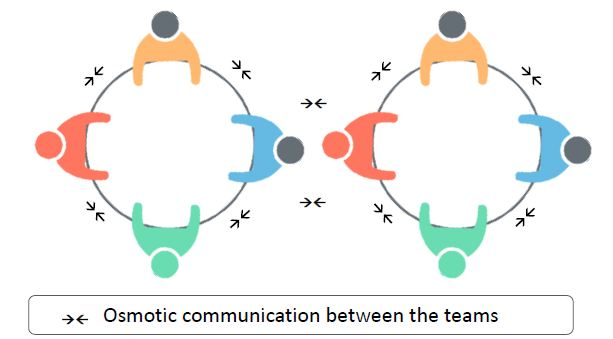 https://www.simplilearn.com/ice9/free_resources_article_thumb/osmotic-communication-teams.JPG