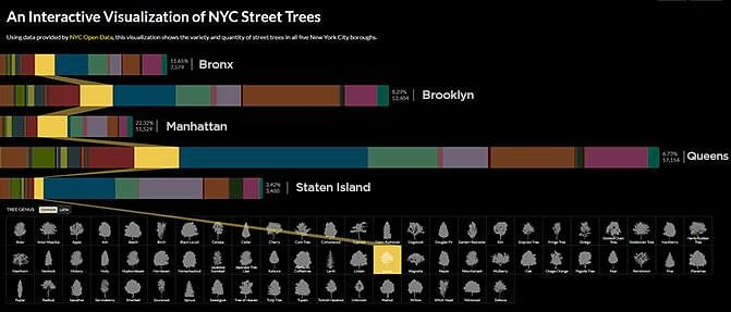 NYC Street Visualization